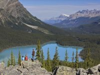 Sightseeing peyto lake Zizka 1h